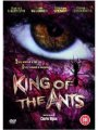 Affiche King of the ants